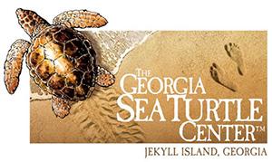 The Georgia Sea Turtle Center